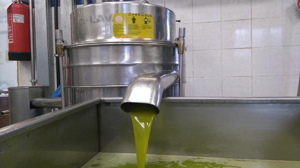 Olivenöl von Olio Cassiano aus der Toskana