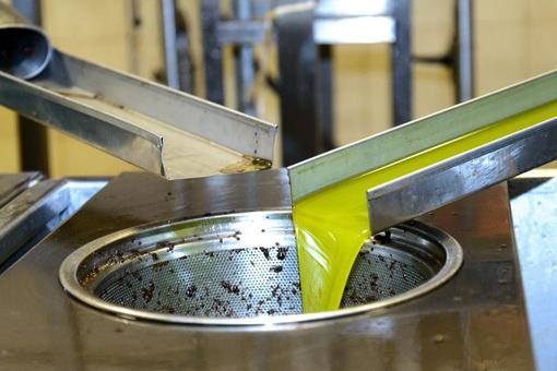 Frisches Noe Olivenöl